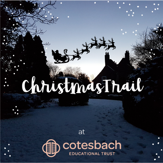 Read more about the article Christmas Trail